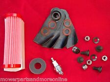 VICTA 18 INCH 160cc 2st MOWER AIR FILTER, SEAL, BLADES AND SPARK PLUG , AFO7282