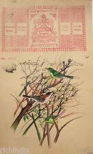 Painting Legal Stamp Vintage Antique Bird  Painting Forest Artwork Basil Ede