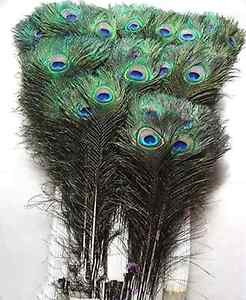 Peacock eye natural feathers 10-12inch /25-30CM 10 Pcs carnival Diy costume mask
