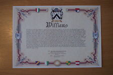 Family name meaning & coat of arms A4 (different designs)