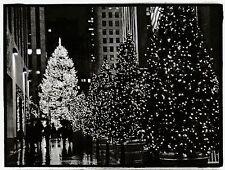 """""""Christmas Trees-""""Rockefeller Center"""" @ Night-/New York City/ {Postcard} (V-33)"""