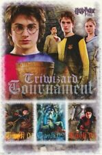 HARRY POTTER ~ GOBLET OF FIRE TRIWIZARD TASKS 22x34 MOVIE POSTER - OUT OF PRINT