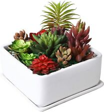 New listing 7 inch Square Ceramic Succulent Planter Pot with Drainage Tray, Window Box 00004000