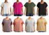 Terra & Sky Women's Plus Size Textured Ruffle Sleeve Peasant Top