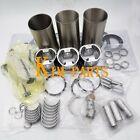 Rebuild Kit For Komatsu 3D84-2 3D84N-2FA S3D84-2BA Engine PC20-7 PC25-1 PC28UU