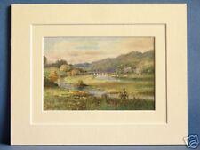 BRIDGE OF SLANE RIVER BOYNE LEINSTER IRELAND c1920 VINTAGE DOUBLE MOUNTED PRINT