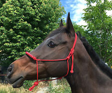 Knotted Parelli style Training horse rope halter