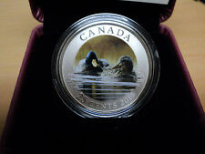 2013 25 Cent Coloured Coin - Mallard