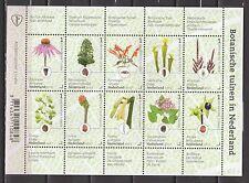 Nederland 2017 Vel Botanische tuinen in Nederland - flowers