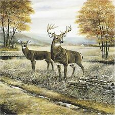 Buck And Doe Deer In Woods #1 Coasters Set Of 4 Fabric Top / Rubber Backed