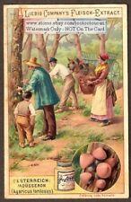 Mushrooms Fungi Mycology Agaricus forilosus Mousseron c1897 Trade Ad Card