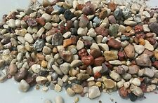 15  lbs fish tank rock pebbles and small river stones