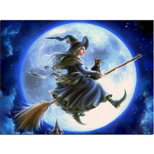 1set Diamond Embroidery Witch in The Moonlight DIY Diamond Painting Home Decor J