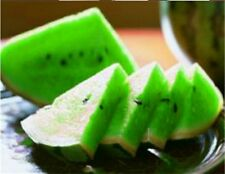 10Pcs New Variety Plant Green Watermelon Seed Vegetable Organic Home Garden BT06