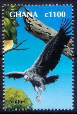 Ghana 2000 MNH, Vulture, Birds of Prey  (B98)