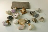 Schachtel mit  Mineralien Fossilien Versteinerung Steine Konvolut A-1254
