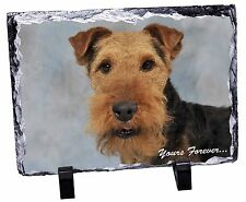 Welsh Terrier 'Yours Forever' Photo Slate Christmas Gift Ornament, AD-WT1ySL