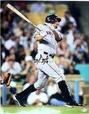 Brandon Belt signed  16x20 photo - 1st HR swing, SF Giants, WS Champs, All Star