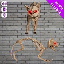 Skelett Katze Blinkende Augen & Screeching Noise Halloween Party Dekoration