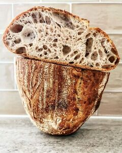 Fresh Sourdough Starter 40yrs old 100%Organic flour Wild Yeast