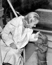 8x10 Print Carole Lombard Candid feeding Dog Cute #CL10