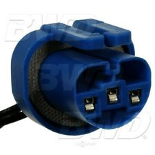 Headlight Connector-Socket BWD PT253
