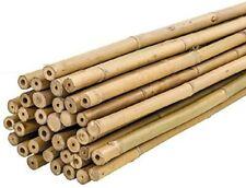 Tutor de bambu natural para plantas 180cm Pack 10uds - Bricomed