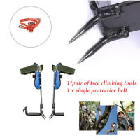 Stainless Steel Tree Climbing Spike Spurs,Safety Belt Straps Rope 100kg Loading