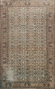 Antique Anatolian Floral Turkish Oriental Area Rug Hand-knotted Wool Carpet 7x10