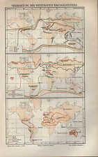 Landkarte map 1897: VERBREITUNG DER WICHTIGSTEN HAUSSÄUGETIERE. Rind Pferd Katz