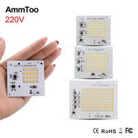 10W 20W 30W 50W 90W Led Bulbs COB Chip Bead For Outdoor FloodLight Lamp 220V