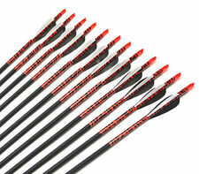 6pcs,31inch,Carbon arrows Spine 500,Plastic Feather Target Practice Hunting