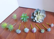 11 Artificial Plants Miniature Succulents With Cray Lotus Flower