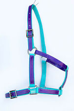 Full Size Halter / Headstall - Turquoise/Purple PVC