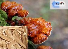 Ling Zhi Dr T&t 100g Premium Ganoderma Lucidum Seta de Reishi Dry Herbs