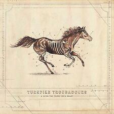 TURNPIKE TROUBADOURS - A LONG WAY FROM YOUR HEART   CD NEUF
