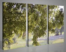 Quadri moderni su tela canvas PERSUASIONI FOGLIOSE foto immagini stampe 130 x 90