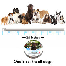 Flea Collar for dog and cat [8 months] safe tick treatment, spot protection