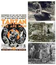 TARZAN THE APE MAN 1932 GLOSSY JUNGLE MOVIE PHOTOS LOT NEW WEISSMULLER BURROUGHS