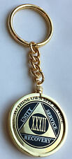 AA Medallion Holder Keychain Fits Recoverychip Reflex & Elegant Medallions