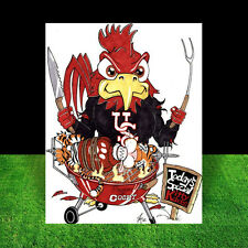 SOUTH CAROLINA GAMECOCKS in jersey, sweater, artist signed FOOTBALL ART, poster