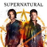 Supernatural: The Complete Thirteenth Season (DVD, 2018, 5-Disc Set)
