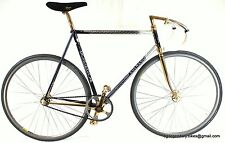Vintage LUXURY TRACK BIKE COLNAGO ESAMEXICO GOLD PLATED REGAL LIVREA CAMPAGNOLO