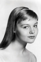 Carol Lynley beautiful pose long hair 11x17 Mini Poster