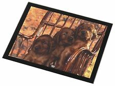 Irish Red Setter Puppy Dogs Black Rim Glass Placemat Animal Table Gif, AD-RS53GP
