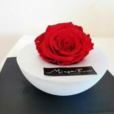 Rosa Stabilizzata Miaga Rose Base Fatta a Mano in Cofanetto Regalo San Valentino