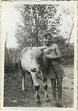 PHOTO ANCIENNE - VINTAGE SNAPSHOT - ANIMAL VACHE ENFANT PAYSAN - COW CHILD FARM