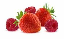 Fruchilla Slushie Mix Natural 99% Fruit Juice - Berry Blast