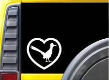 Roadrunner Heart Bird K315 6 inch decal sticker