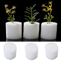 100Pcs Soilless Hydroponic Seed Nursery Plant Pot Sponge Cultivation Tray Trendy